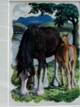 Clydesdale Mare And Foal Tunnicliffe