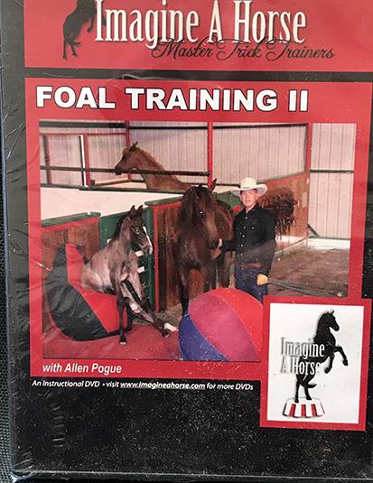Enhanced Foal Training II
