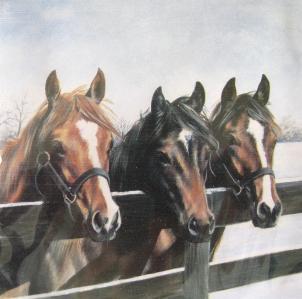 Note Cube Three Horses In Snow
