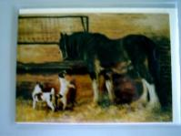Shire Horse with two Jack Russells