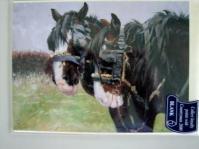 Shire Horse Card
