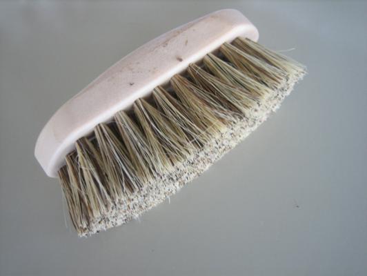 Dandy Brush Plastic Backed.