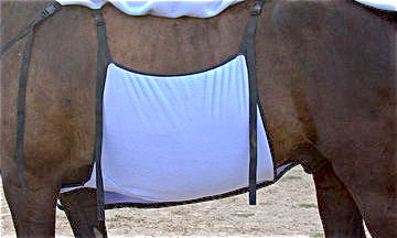 wiksmart horse cooler side detail
