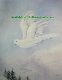 Card White Dove
