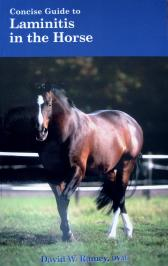 Concise Guide to Laminitis