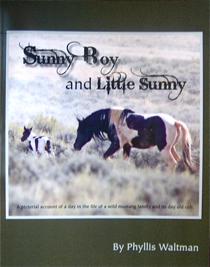 Sunny Boy and Little Sunny